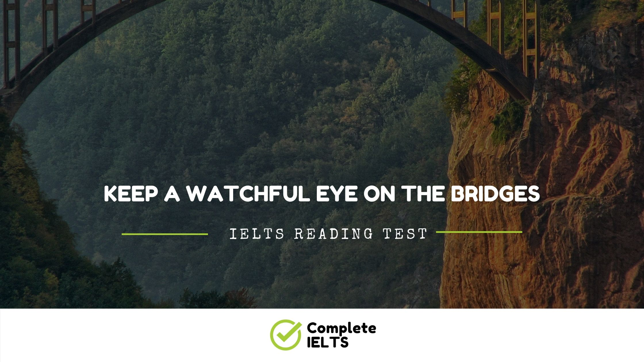 Keep a Watchful Eye on the Bridges