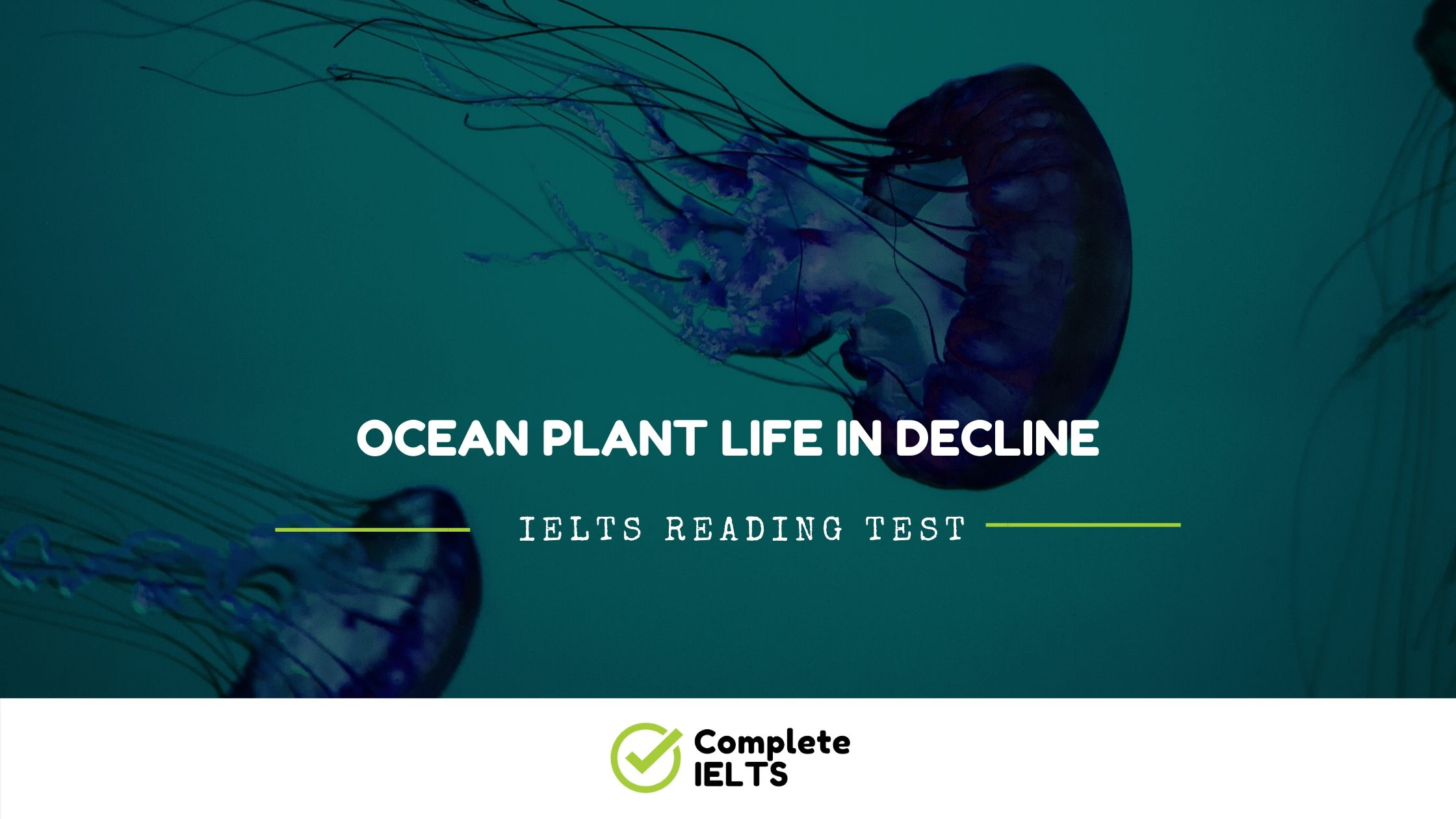 Ocean Plant life in decline | IELTS Academic Reading Sample Question