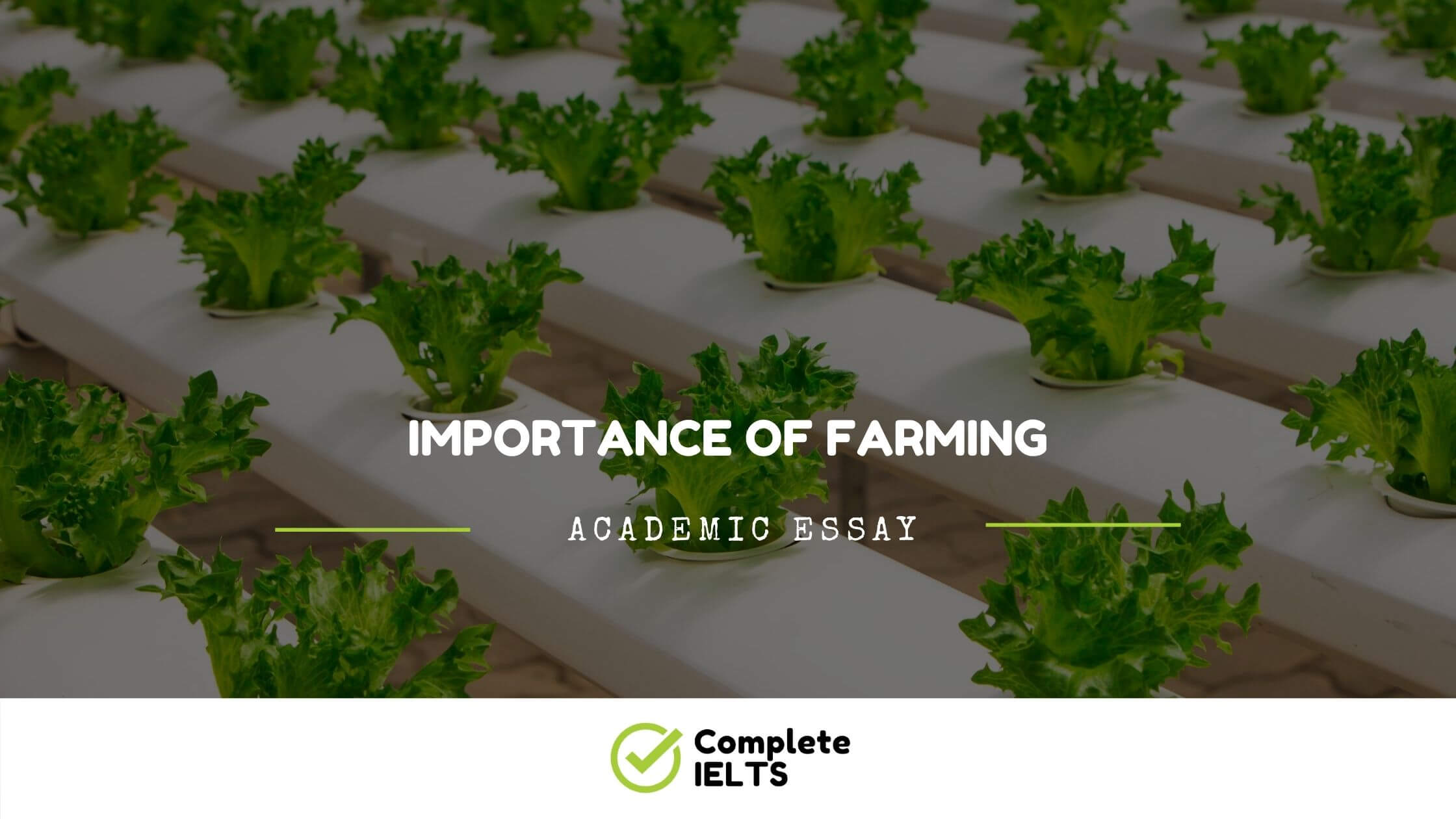 Essay on Importance of Farming